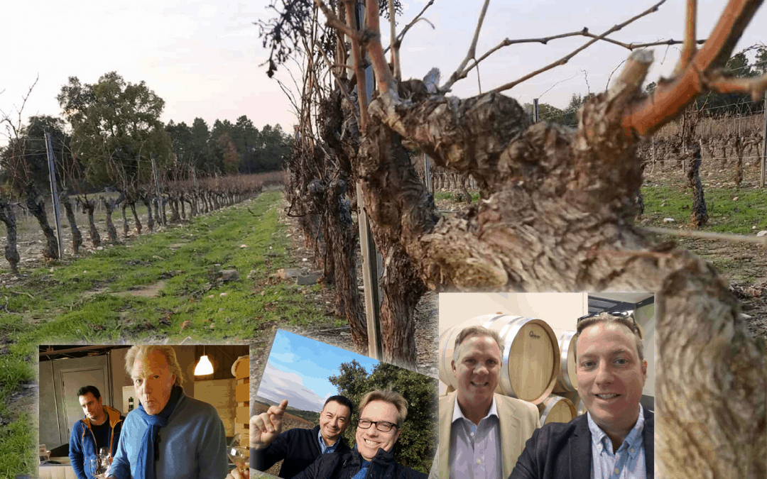 Master Wines 2016 Year In Review